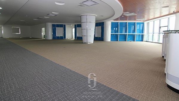 Dell Chengdu办公地毯案例